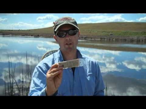 Rocky Ford Spring Creek Fly Fishing Tips - By Red's Fly Shop