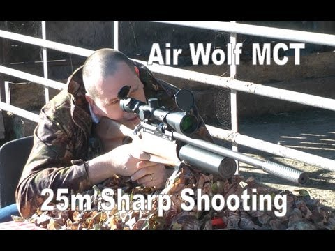 AIR RIFLE @ 25m: Daystate Airwolf MCT Air Gun .177