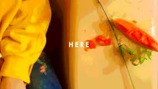 Sasha Sloan - Here (Official Audio)
