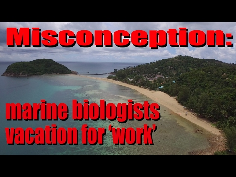 Misconception: Marine biologists vacation for 'work'