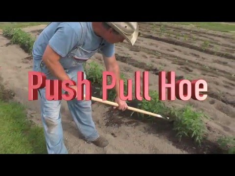 The Best Garden Hoe You've Ever Used