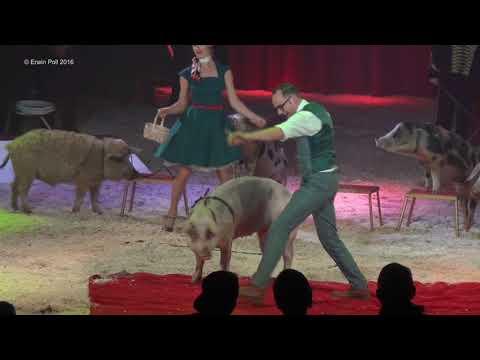 Wintercircus Apeldoorn 2016 met acts uit het beroemde Circus Monte Carlo full show
