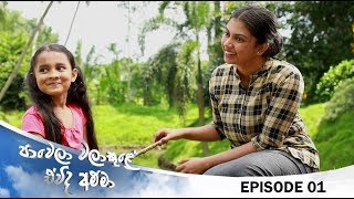 Paawela Walakule | Episode 01 10th August 2019 Thumbnail