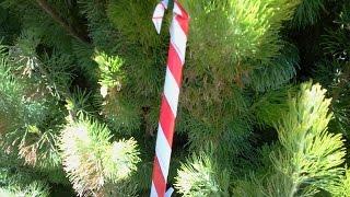 Origami Ornaments. Candy Cane For Christmas Tree. Baston De Caramelo Para Arbol De Navidad