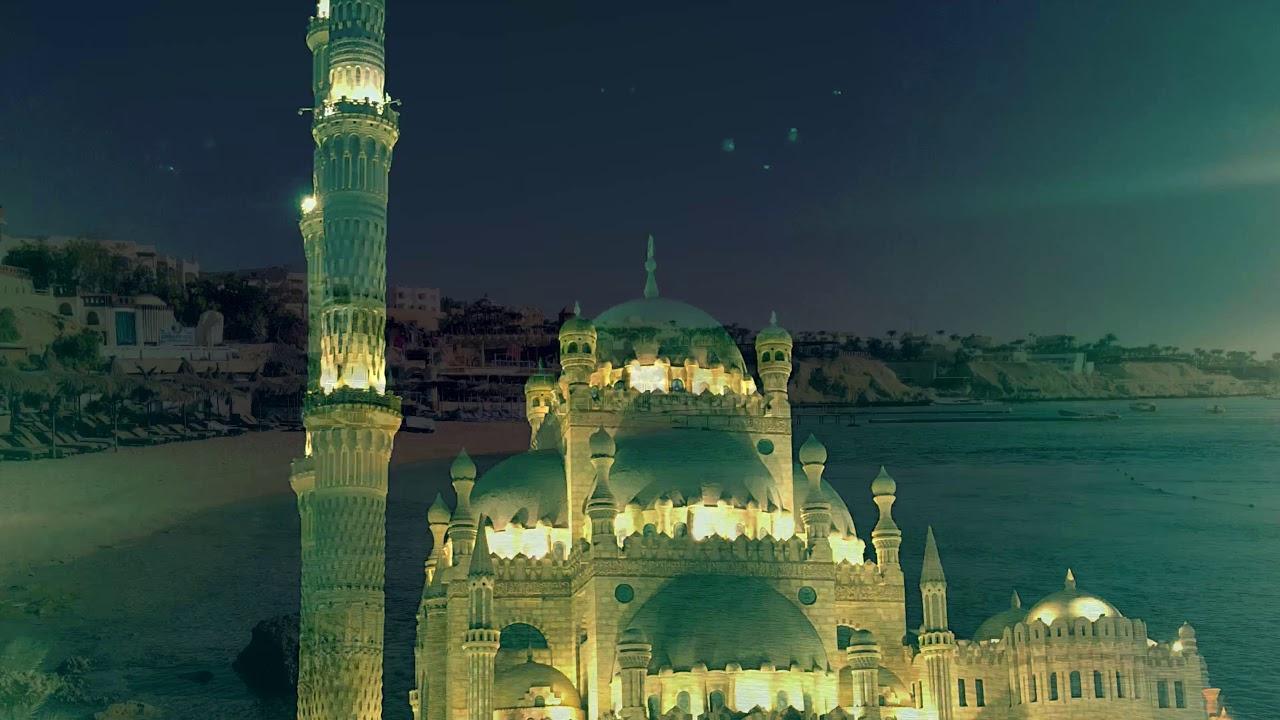 Sharm el Sheik. Viaggio, immersioni e gite nella porta dell'oriente
