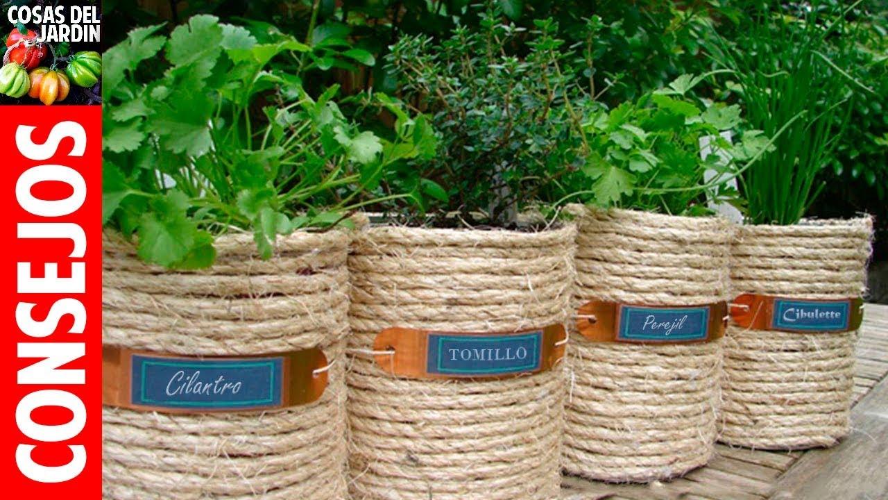 para que sirven las plantas aromaticas