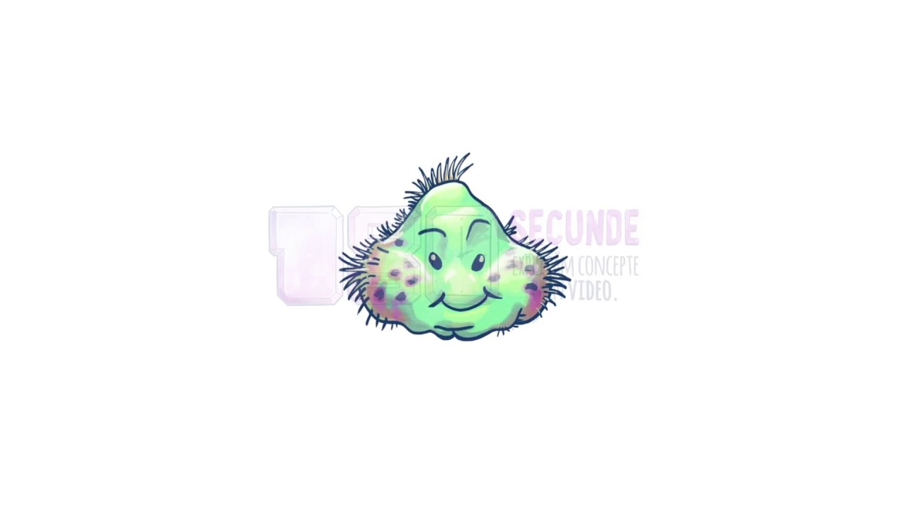 bacterii 5 secunde)