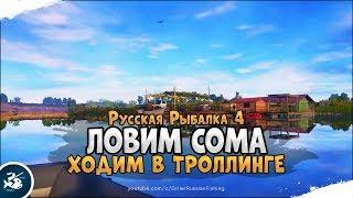 Сом в троллинге Фармим серебро Русская Рыбалка 4 Стрим