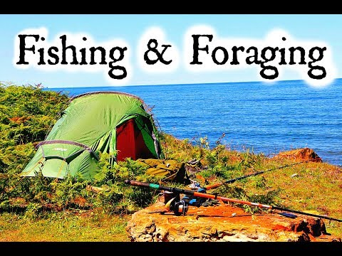 Coastal foraging & Wild Camping With Joey D | Craft beer Reviews