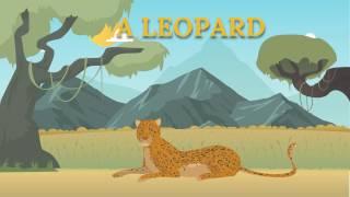 """Мультфильм """"Дикие Животные Африки""""  для детей от года"""