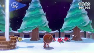 Super Mario 3D World 3-1 Speedrun - Time: 14 (Tied WR)