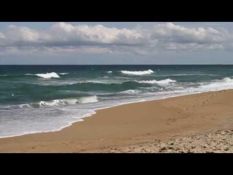 UNC CSI Renewable Ocean Energy Program 2014