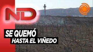 Carlos Paz: El incendio llegó hasta el complejo Peko´s