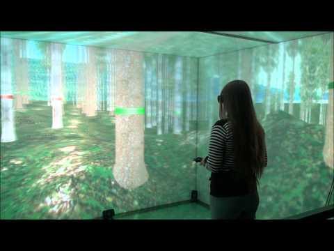 3D Virtual Cave