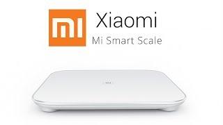 Умные весы Xiaomi Mi Smart Scale. Полный обзор