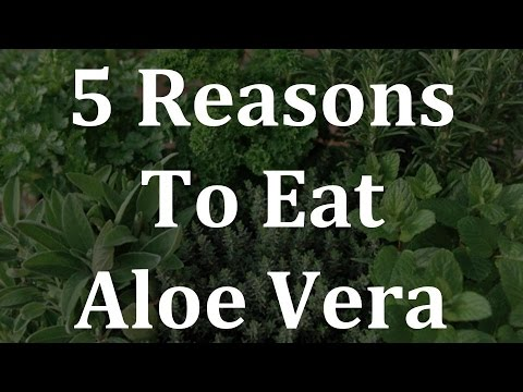 5 reasons to eat aloe vera youtube. Black Bedroom Furniture Sets. Home Design Ideas