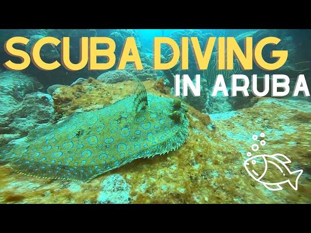 SCUBA DIVING IN ARUBA