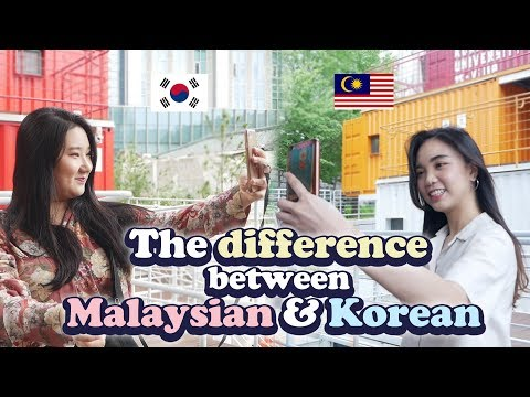 The difference between Malaysian / Korean when travelling abroad  Blimey CD Player