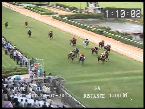 ม้าแข่งสนามฝรั่ง อา.20กค.57R06