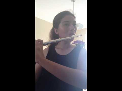 Theme from 1812 Overture  flute