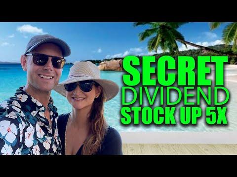 SECRET DIVIDEND STOCK: My Wife 5X'd Her Money