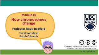 10G - Causes of chromosome rearrangements I
