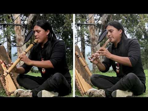Raimy Salazar - The Last of the Mohicans mp3 ke stažení