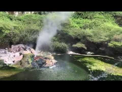 "Geothermal ""I Will Survive"" - a la Rotorua, New Zealand"