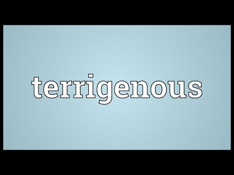 Terrigenous Meaning