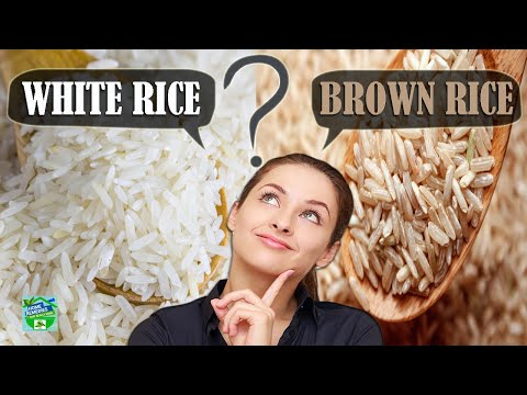 which-is-healthier-?-white-rice-or-brown-rice-?
