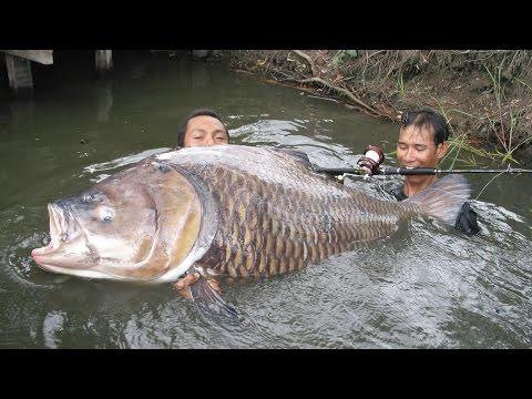 Рыбалка, приколы на рыбалке, фото,видео,анекдоты