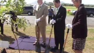 Tree planting symbolizes the Korea-IRRI partnership