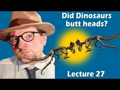 Did Dinosaurs Butt Heads?