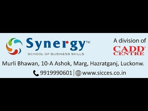 Project Management Expert   PME by Synergy Hazratganj Lucknow