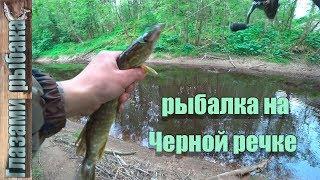 Рыбалка на Черной речке. Спиннинг с берега.