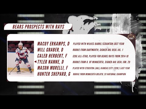 Affiliate Update: Previewing the South Carolina Stingrays 2020-21 Season