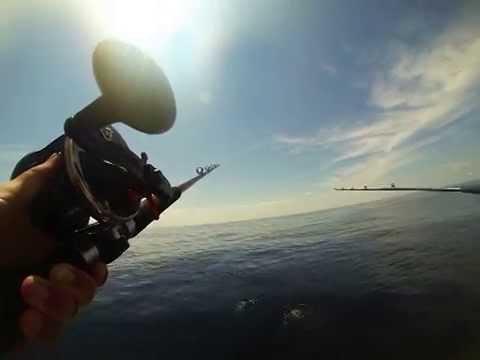 Deep Sea Fishing Hampton NH