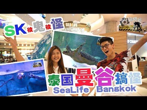 Bangkok, Thailand I Aquarium in Bangkok SEA LIFE Bangkok  曼谷海洋世界