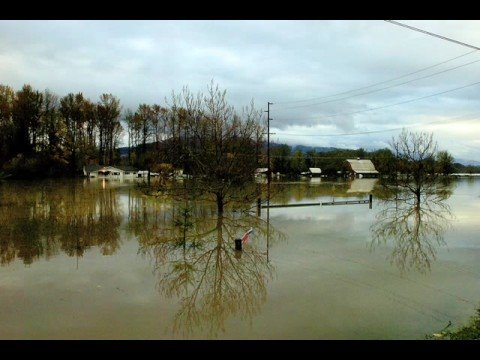 Cowlitz River Flood 2006