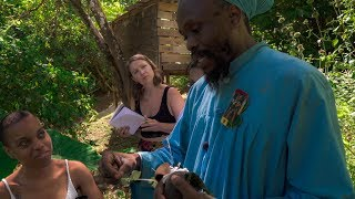 The Power Of HERBS! • Ital Herb Tour W/ Priest Kailash • Vegan Electric Food healing