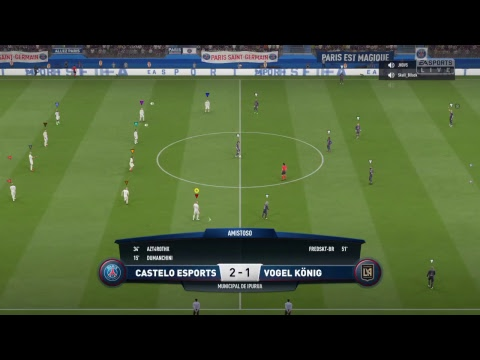 VOGEL KÖNIG x Castelo Esports