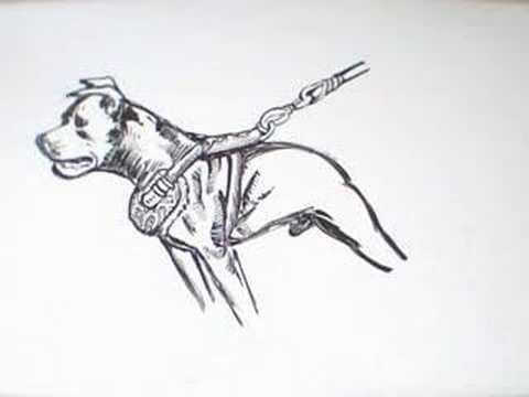 Freestyle Art : American Pit Bull Terrier IV