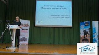 Конференция 2017.03.22 Доклад Циомашко Анны Станиславовны