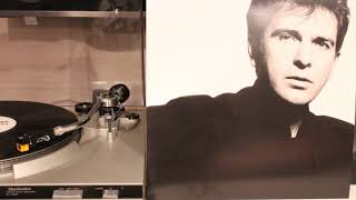 Peter Gabriel - Red Rain (Vinyl - Half Speed Remaster 33RPM)