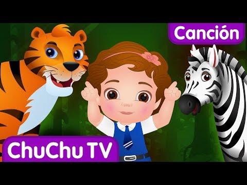 Vamos a ir al bosque | Animales Salvajes para Ni帽os | Canciones Infantiles Populares de ChuChu TV
