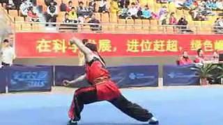 2010年全国武术套路锦标赛(传统)M11 001 男子南拳 朱雄星