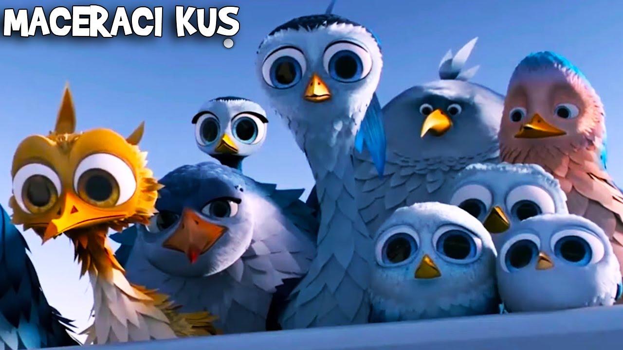 Karl, Minik Kuşu Kurtardı   Maceracı Kuş  Animasyon Filmi