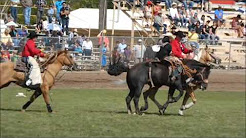 Events from Pendleton round-up 2015