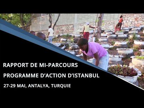 Rapport de mi-parcours, Programme d'action d'Istanbul