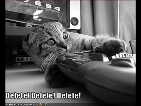 LOLCats in Rescue Me Delete Fireman Funny Cute Funny Cats